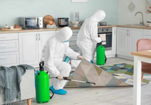 Workers,In,Biohazard,Suits,Disinfecting,House